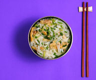 Hanoi pho chicken noodle soup Royalty Free Stock Images