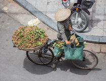 Hanoi. Street vendor in Hanoi selling fruits on a bicycle, Vietnam royalty free stock image