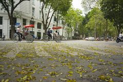 Hanoi, Vietnam - April 13, 2014: Traffic on street in falling season in Hanoi, Vietnam with a lot of yellow leaves laying on groun. D royalty free stock image