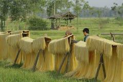 Hanoi, Vietnam: die Pfeilwurzsuppennudeln, die spezielle vietnamesische Nudeln sind, werden auf den Bambuszäunen getrocknet, die  Stockfotos