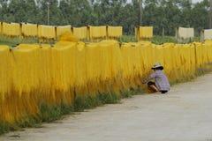 Hanoi, Vietnam: die Pfeilwurzsuppennudeln, die spezielle vietnamesische Nudeln sind, werden auf den Bambuszäunen getrocknet, die  Stockfotografie