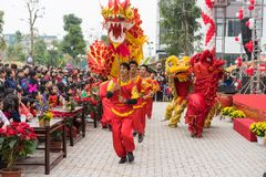 Hanoi, Vietnam - Feb 7, 2015: A show of lion and dragon dance at Vietnamese lunar new year festival organized at Vinschool, Vinhom royalty free stock photo