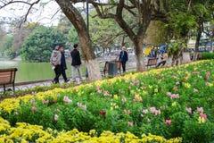 Hanoi, Vietnam - 20 febbraio 2017: Peopla che cammina dal giardino floreale immagine stock