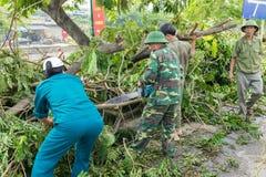 Hanoi, Vietnam - Juni 14, 2015: Gevallen die boom op straat door natuurlijk zwaar windonweer wordt beschadigd in Tam Trinh-straat Royalty-vrije Stock Afbeeldingen