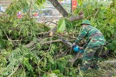 Hanoi, Vietnam - Juni 14, 2015: Gevallen die boom op straat door natuurlijk zwaar windonweer wordt beschadigd in Tam Trinh-straat Royalty-vrije Stock Fotografie