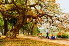 Hanoi Vietnam - 01 mars, 2013: Pojken och hans morfar går omkring på Hoan Kiem sjön Royaltyfria Foton