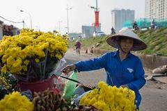 HANOI VIETNAM - NOV3,2017 : vietnamese flower seller preparing y stock photo