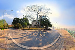 Hanoi,Vietnam -November 10,2012: The shadows of the tree is on the street at West lake Stock Image