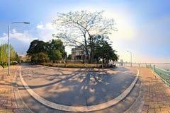 Hanoi Vietnam - November 10,2012: Skuggorna av trädet är på gatan på den västra sjön Fotografering för Bildbyråer