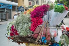 Street vendors selling various types of flowers from their bicycle in Hanoi Old Quarter. royalty free stock photos