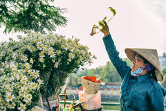Hanoi Vietnam: 24-Novemver 2014: Vattnet för blommaförsäljare blommorna i gatan Royaltyfria Bilder