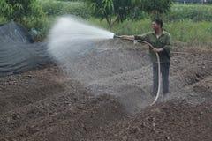 Hanoi, Vietnam - 21. Oktober 2015: Landwirtwasser die Anlagen zu seinem Feld auf Tageslicht Stockfotografie