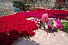 Hanoi Wietnam, Lipiec, - 28, 2017: Kadzidło wtyka suszarniczy plenerowego z Wietnamskim pracownikiem pracuje na jardzie Zdjęcia Royalty Free