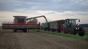 Hanover, Duitsland - Augustus 08, 2017: Korrels van het maaidorser de leeggemaakte graan in vrachtwagen stock footage