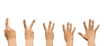 Hans. Five hands showing different gestures isolated on a white background Royalty Free Stock Photos