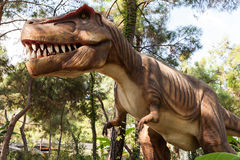 hans mun som visar den toothy tyrannosaurusen Arkivbilder