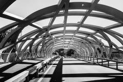 Hans Wilsdorf Bridge i Genève, Schweiz Royaltyfri Foto