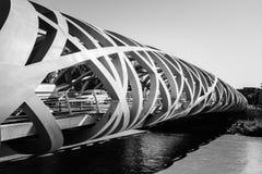 Hans Wilsdorf Bridge i Genève, Schweiz Royaltyfria Foton