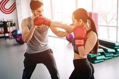 Hansome and well-built partners are boxing together. She attackes hi, while he is trying to defennce himself and also. Trying to attack. They are concentrated Royalty Free Stock Photo