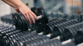 Hanteln för utbildning för idrottshallkvinnastyrka väger lyftande att få klar för övningsgenomkörare Kvinnligt öva för konditionf