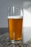 Hantverkölexponeringsglas med blond öl Royaltyfri Foto
