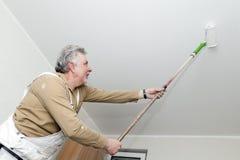 hantverkaremålarfärgrulle Fotografering för Bildbyråer