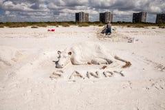 Hantverkaresandskulpturer av kor och tjurar i den vita sanden av T royaltyfria foton