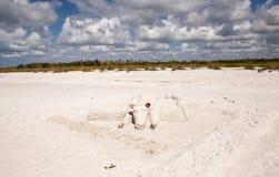 Hantverkaresandskulpturer av kor och tjurar i den vita sanden av T arkivbilder