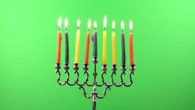 Hanukkah menorah candles greenscreen stock video