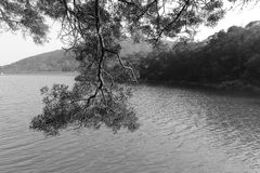 Haoyue ( bright moon ) lake black and white image Royalty Free Stock Photography