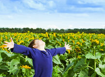 Happiness. Happy boy in sunflowers field Stock Photo