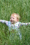 Happiness. Portrait of 9 month boy in oat green field (concept of happiness and hope with future Stock Photos