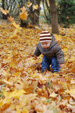 Happiness child playing in forest Stock Photography
