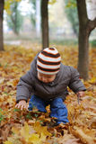 Happiness child playing in forest Stock Image