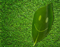 Happiness Concept Background. Happiness concept, leaf smile on green grass background, eco friendly, nature and ecology stock photography