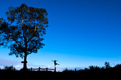 Happiness,Freedom,Silhouette,landscape. Happy freedom of liberation tongue space, comfortable cool sky clouds wind happy nature most successful Tree Silhouette Royalty Free Stock Photos