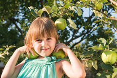 Happiness girl picking an apple Royalty Free Stock Photo
