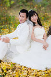 Happiness groom and bride Royalty Free Stock Photo