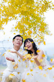 Happiness groom and bride Royalty Free Stock Photos