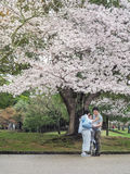 Happiness of a Japanese family in Nara Park. Nara, Japan - April 8, 2017 : Happiness of a Japanese family in Nara Park.They enjoying Cherry blossoms festival Stock Photos