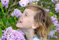 Happiness in lilac royalty free stock photography