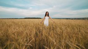 Happiness, nature, summer holidays, vacation and people concept - young woman in white dress walking along cereal field stock footage