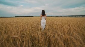Happiness, nature, summer holidays, vacation and people concept - young woman in white dress walking along cereal field.  stock footage