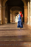 The happiness of the sun and flamenco Royalty Free Stock Photos