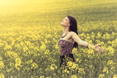 Happiness woman in sunny summer ocean of yellow flowers. Attractive happy young girl enjoying the warm summer sun and her health in a wide green and yellow Stock Photography