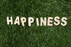 Happiness Wooden Sign On Grass. Happiness wooden sign  on green grass background Royalty Free Stock Photography