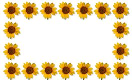 Happpy summer background with sunflowers Stock Images