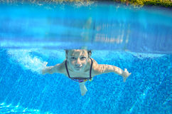 Happy active underwater child swims in pool Stock Photo