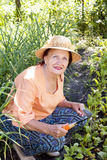 The happy adult female  grows up vegetables Stock Photo