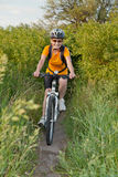 Happy adult  woman cyclist Royalty Free Stock Image